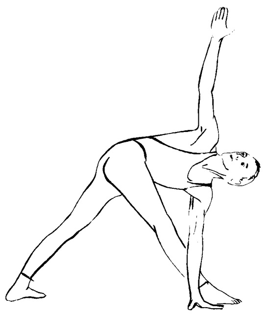 Line Drawing Yoga Pose : Honourable guests yoga suits her